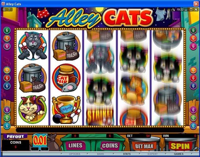 Spin runde bonus–797682